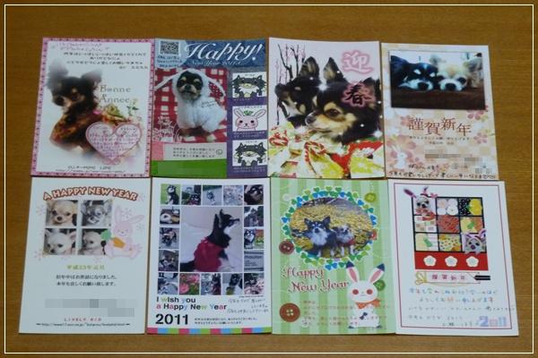 2011-3_20110119150718.jpg
