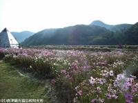 佐里温泉(2008.11.5)