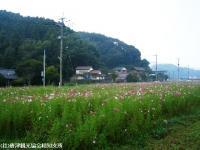 yamasaki2008101103.jpg