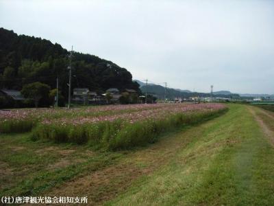 yamasaki2008101401.jpg