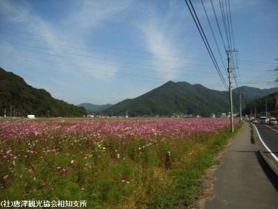yamasaki2008102101.jpg