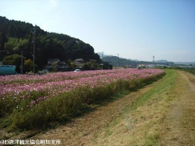 yamasaki2008102103.jpg