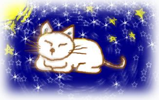 夜、猫の居る風景