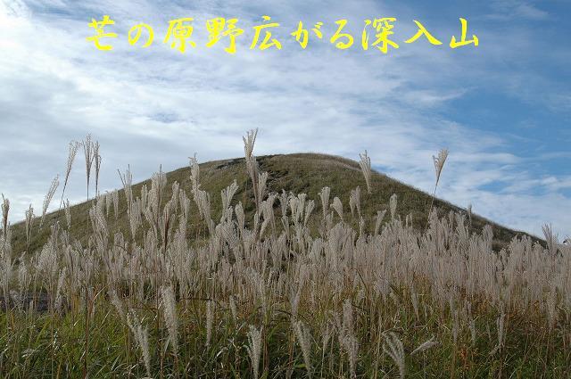 深入山12