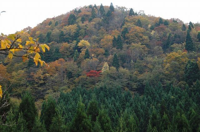 岩井滝付近2