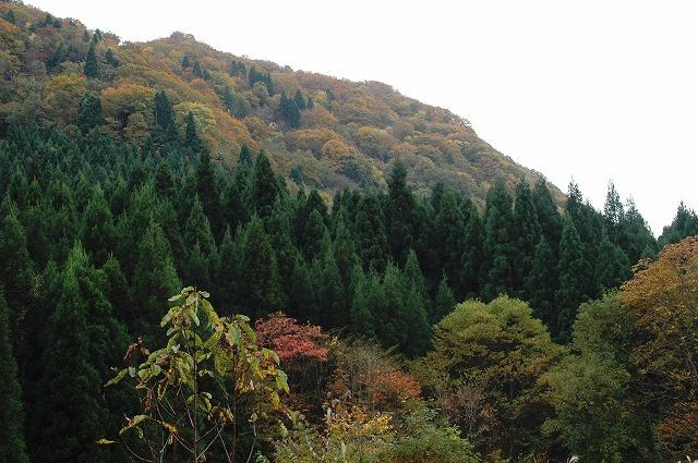 岩井滝付近3
