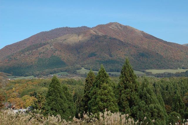 蒜山高原10