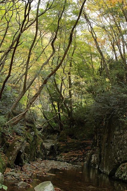 白賀渓谷3