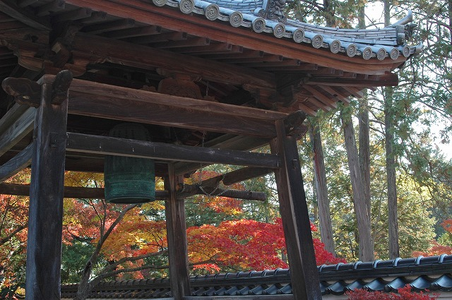 宝福寺50
