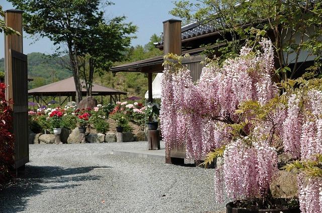 美咲花山公園1