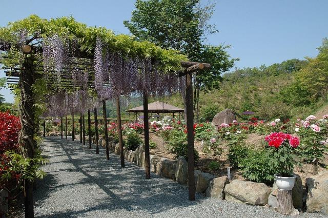 美咲花山公園2