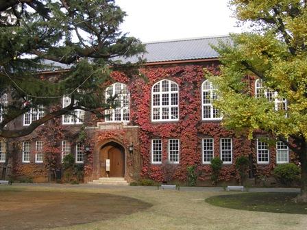 紅葉の図書館