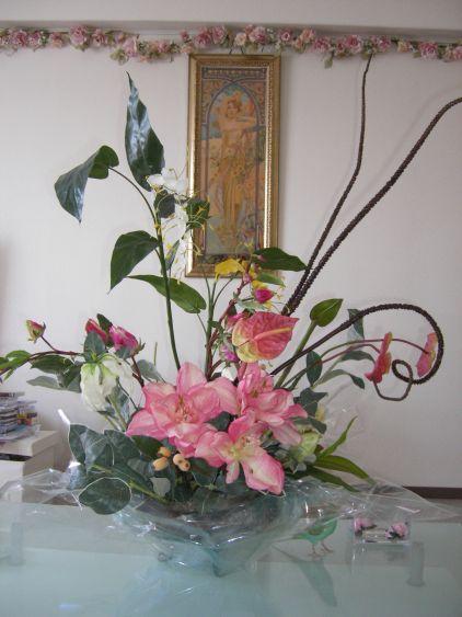 トロピカルの花