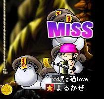 Maple0001_20080813025555.jpg