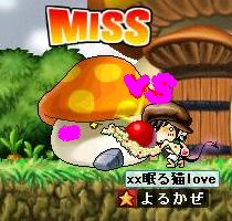 Maple0008_20080907020205.jpg