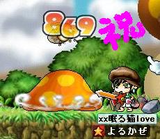 Maple0011_20080907020220.jpg