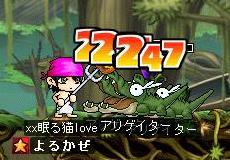 Maple0014_20080813025713.jpg