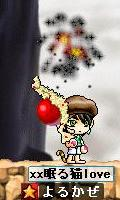 Maple0015_20080830031004.jpg
