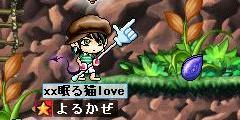 Maple0017_20080907020251.jpg