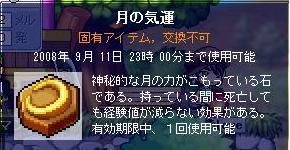 Maple0020_20080907020315.jpg