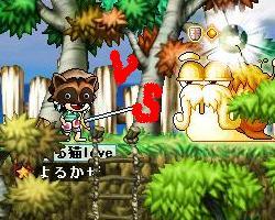 Maple0021_20080822104229.jpg