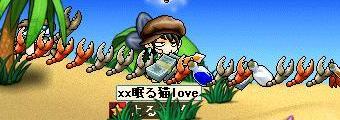 Maple0027_20080830031116.jpg