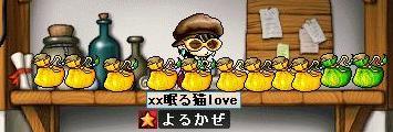 Maple0028_20080828123620.jpg