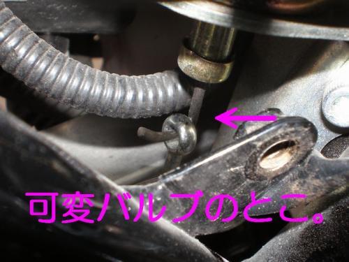 MA6.jpg