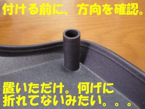 nao4.jpg