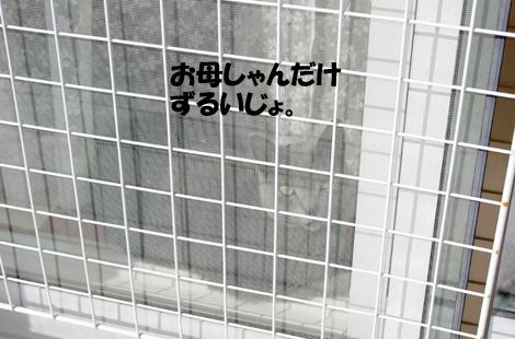 0211021601.jpg