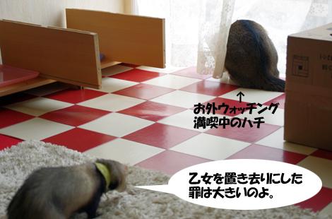 2011030802.jpg