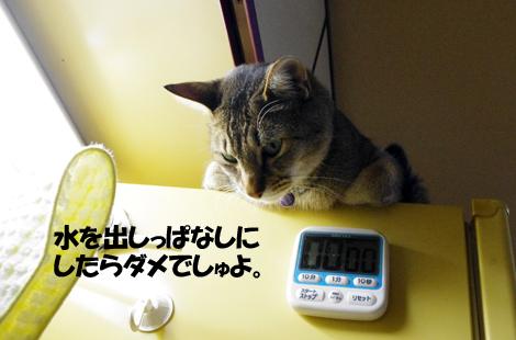2011031002.jpg