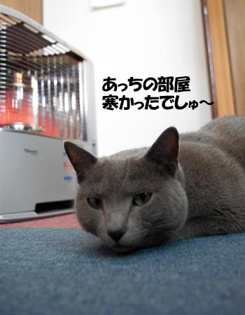 2011031103.jpg