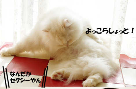 2011032406.jpg