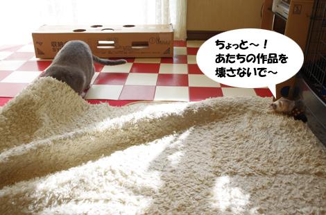 2011032704.jpg