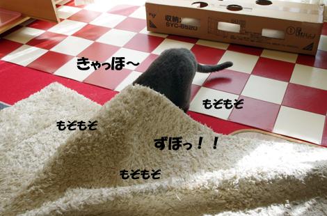 2011032705.jpg