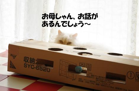 2011032804.jpg