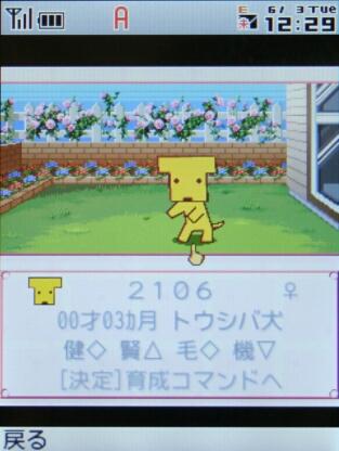 ウチの犬2 with トウシバ犬
