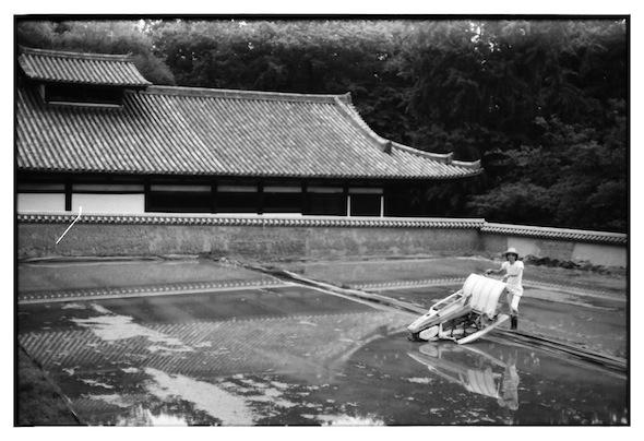 toudaiji2010_3.jpg