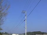 P2600407.jpg