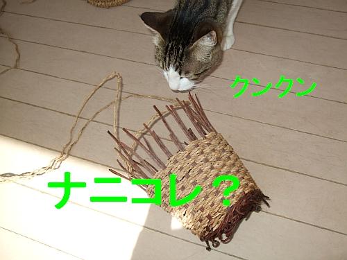 PO20110330_0001.jpg