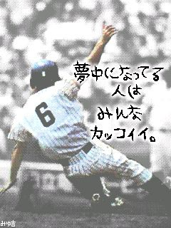 CA4EAD3Y.jpg