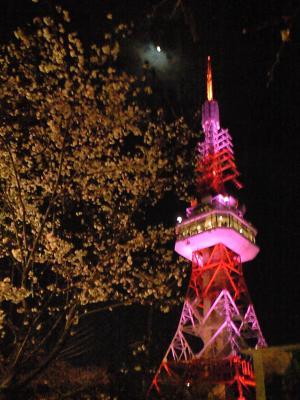 桜とタワー