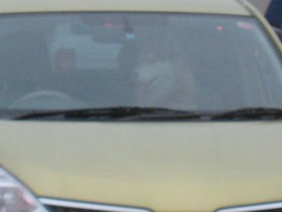 IMG_8387車中