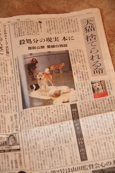 1月21日 新聞