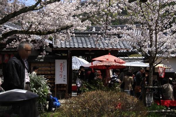 2011_4_10 京都の桜_MG_4387