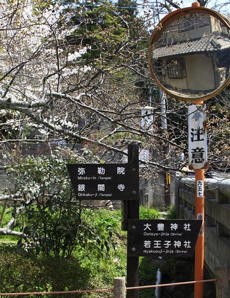 2011_4_10 京都の桜_MG_4383