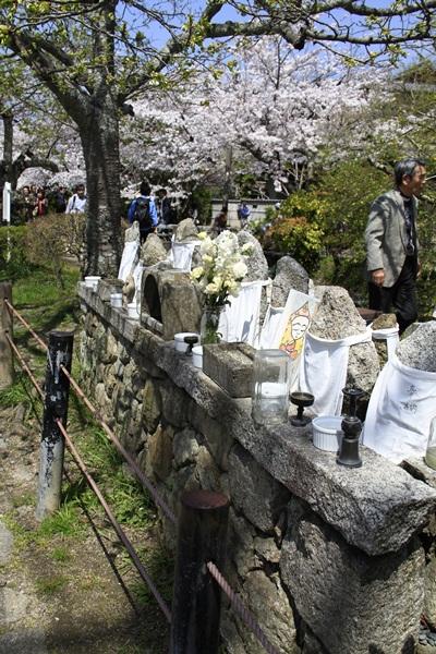 2011_4_10 京都の桜_MG_4384