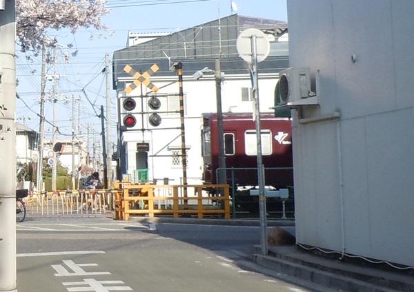 2011_04_14 宝塚ガーデンフィールズDSCN0964