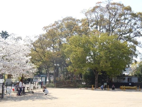 2011_04_14 宝塚ガーデンフィールズDSCN0969